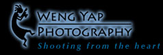 logo WengYap Photography